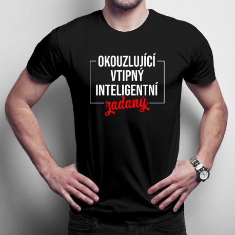 https://trickovy.cz/6574-okouzlujici-vtipny-inteligentni-zadany-panske-tricko-s-potiskem.html